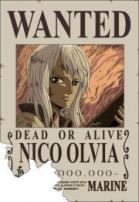 nico-olvia-one-piece-wanted.jpg
